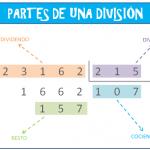 Divisiones de 3 cifras