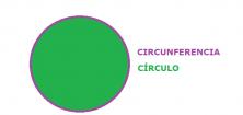 el círculo - circulo y circuenferencia